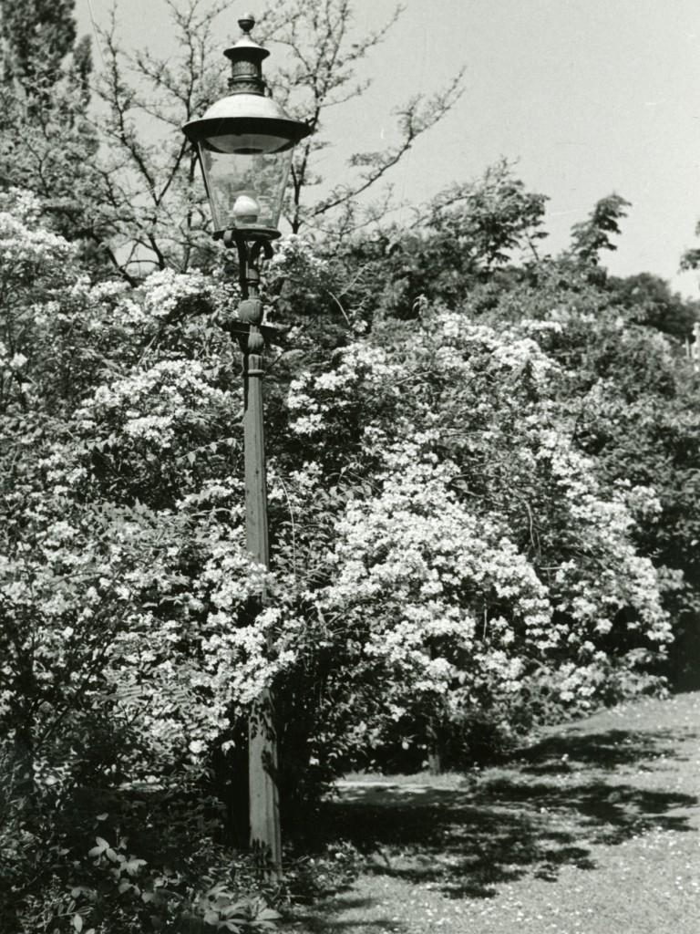 Den gamle gaslampe. Foto fra 1930. Foto:G.N.Brandt